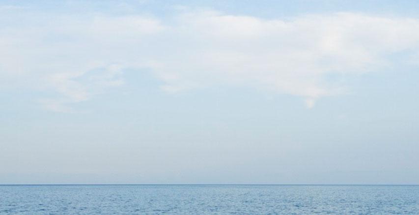 de_zee